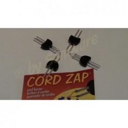 Ersatzspitze für Cord-Zap